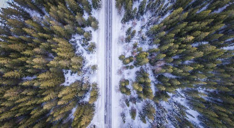 cómo se distinguen los neumáticos de invierno